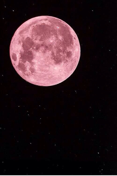 Reflection Questions For The Full Snow Moon Feb 14th